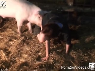 Woman has pig sex in the farm