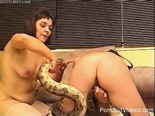 Dirty lesbian porn video with snake zoophilia included