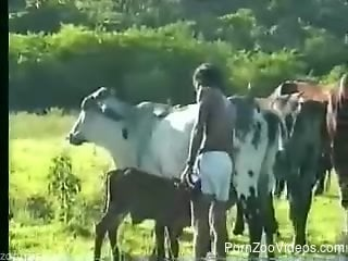 Outdoor porn with animals and a farmer addicted to zoophilia