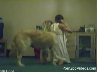 Playful doggy is enjoying a masked zoophile slut