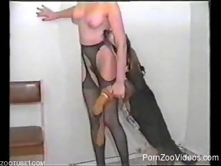 Big-tit babe in stockings gets pounded by a small doggy