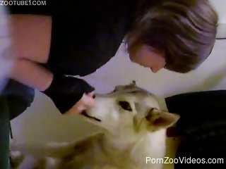 Brunette kisses her cute doggy in sensual way