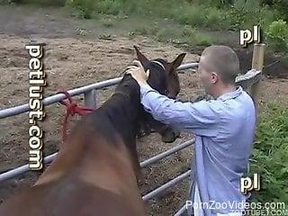 Horse fuck xnxx scenery in hot outdoor video