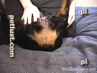 Serious scenes of zoophilia with dogs on live cam