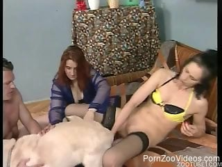 Stockings-wearing brunette fucks a dog with people watching her