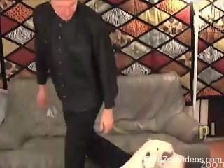 Dirty Dalmatian is about to enjoy violent fucking