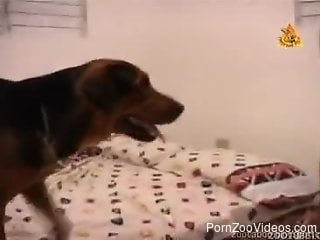 Awesome doggy is getting a juicy pussy of a slender girl