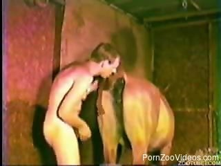 Pervert came in barn to try hot sex with innocent horse