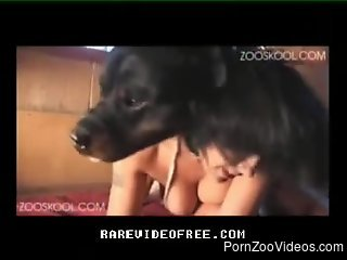 Trained Rottweiler nails his unsatisfied mistress in hot pose