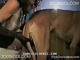 Asian chick in nylons is sucking a tasty dick of her dog