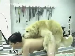 Bleached hottie gets her pussy fucked by big trained doggy