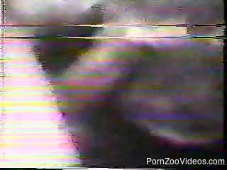 VHS rip zoo video featuring incredible action