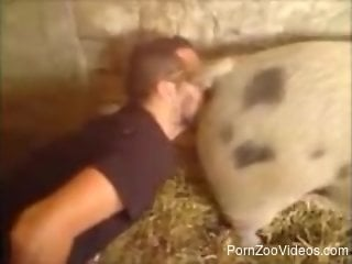 Lucky guy gets to lick this pig's delicious pussy