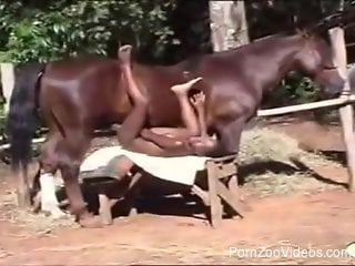 Black babe devouring a brown horse's huge boner