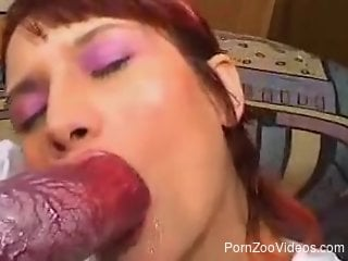 Redheaded zoophile worships a dog's red cock on cam