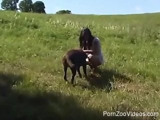 Lust at first sight with a black dog and hot slut