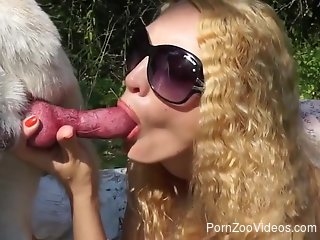 Frizzy-haired babe banged on all fours by a dog