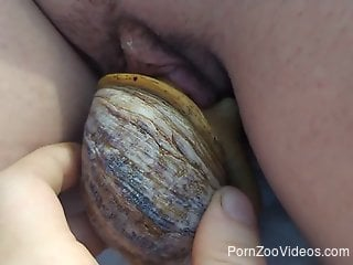 Hot lady fucking a very sexy snail for the camera