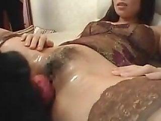 Animal Porn Tube