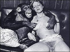 Sex with Animals for Free
