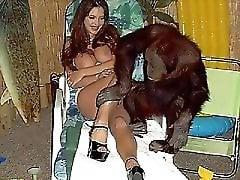 Zoo porn TV